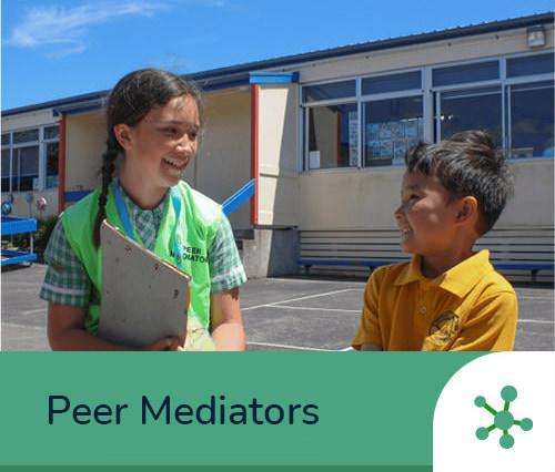Peer Mediators